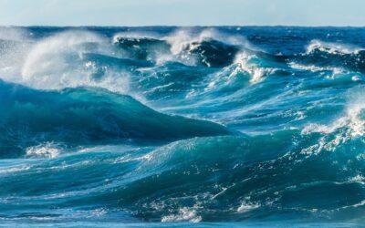 Bin ich der Ozean, oder die Welle? Oder Beides?